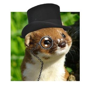 Charming Weasel Logo